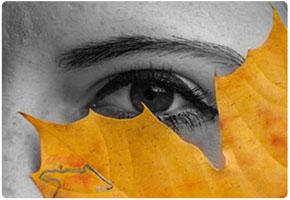 Øye-blad